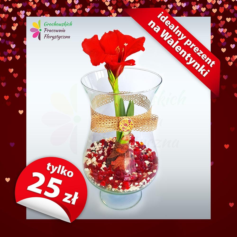 1ee485058ef989 Walentynki kwiaciarnia Legnica Grochowscy · Walentynki kwiaciarnia Legnica  Grochowscy